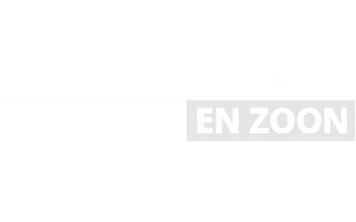 seo optimalisatie WordPress website Hans Top